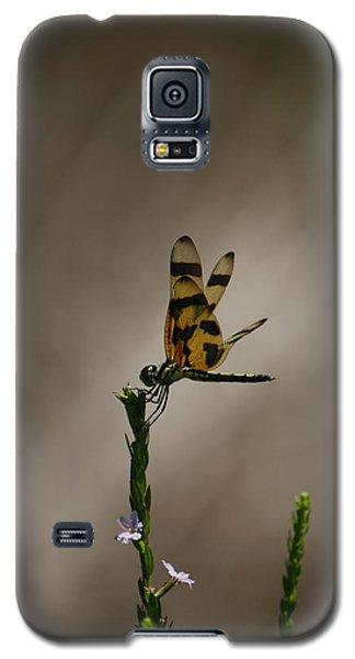 Tiptop Galaxy S5 Case