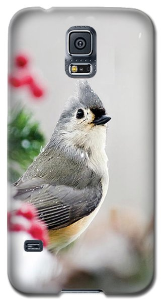 Galaxy S5 Case featuring the photograph Titmouse Bird Portrait by Christina Rollo