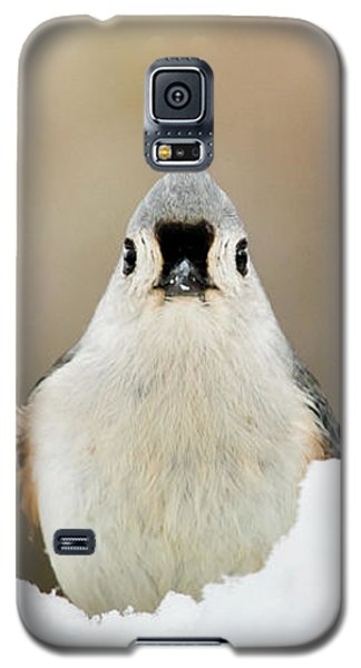 Tufted Titmouse In Snow Galaxy S5 Case