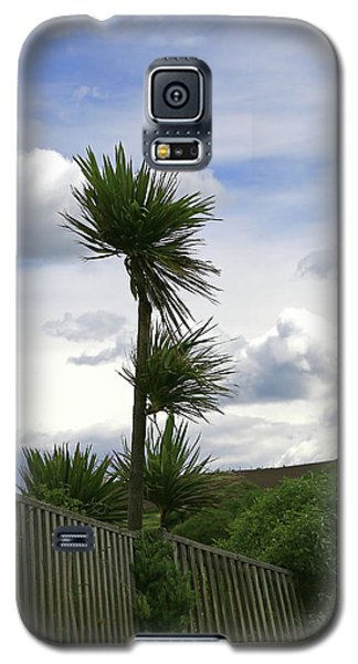 Galaxy S5 Case featuring the photograph To Kouka Cabbage Tree by Nareeta Martin
