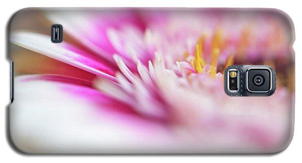 Galaxy S5 Case featuring the photograph To Live In Dream 1. Macro Gerbera by Jenny Rainbow