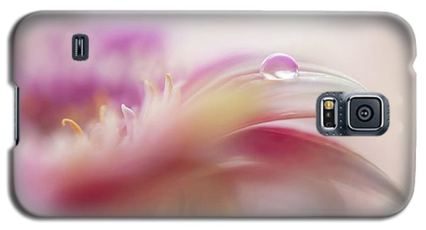 Galaxy S5 Case featuring the photograph To Live In Dream 2. Macro Gerbera by Jenny Rainbow