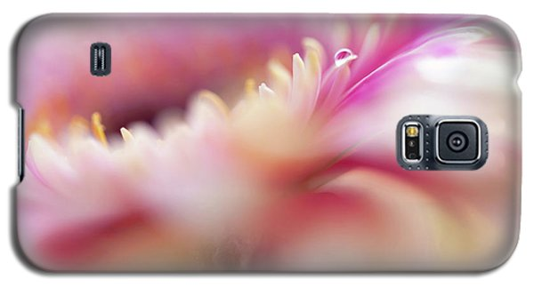 Galaxy S5 Case featuring the photograph To Live In Dream 5. Macro Gerbera by Jenny Rainbow