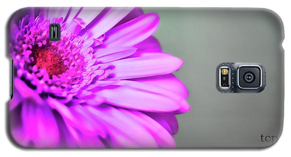 Galaxy S5 Case featuring the photograph To The World by Traci Cottingham