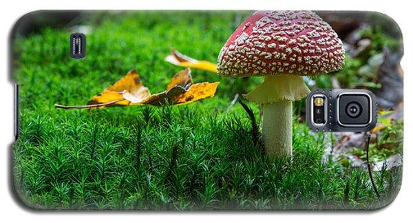 Toadstool Galaxy S5 Case