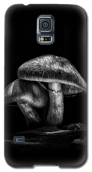 Toadstools On A Toronto Trail No 2 Galaxy S5 Case by Brian Carson