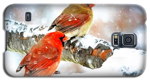 Together In The Snow Galaxy S5 Case by Nava Thompson