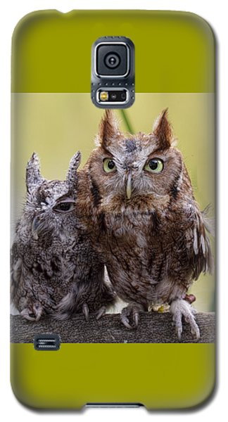Togetherness Galaxy S5 Case by Cheri McEachin