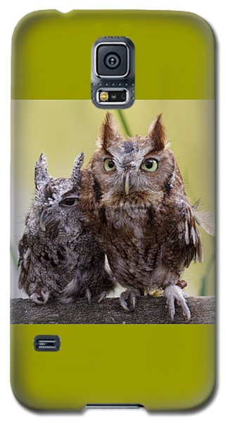 Galaxy S5 Case featuring the photograph Togetherness by Cheri McEachin