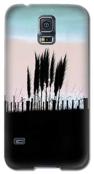 Toitoi Sunset Galaxy S5 Case