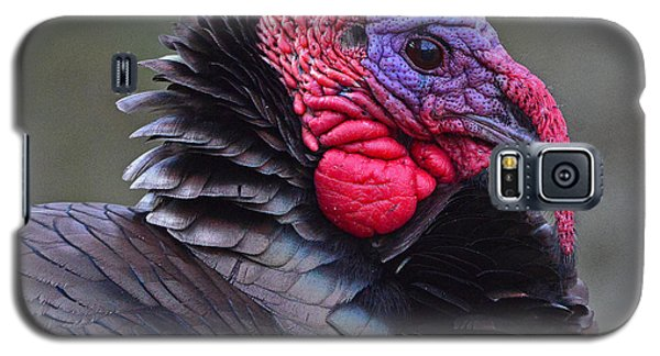 Tom Turkey Galaxy S5 Case