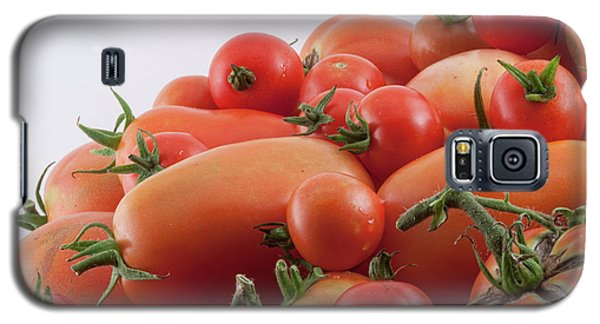 Galaxy S5 Case featuring the photograph Tomato Hill by James BO Insogna