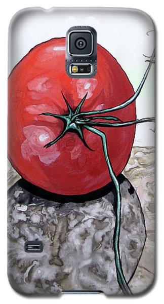 Tomato On Marble Galaxy S5 Case by Mary Ellen Frazee
