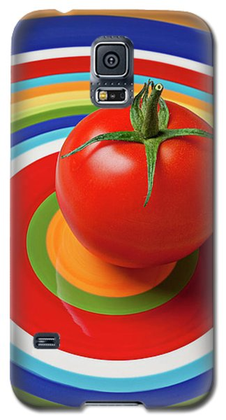 Tomato On Plate With Circles Galaxy S5 Case