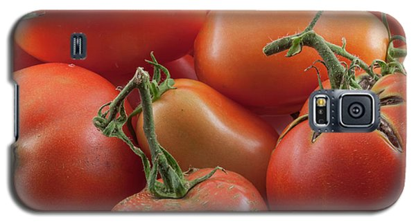 Galaxy S5 Case featuring the photograph Tomato Stems by James BO Insogna