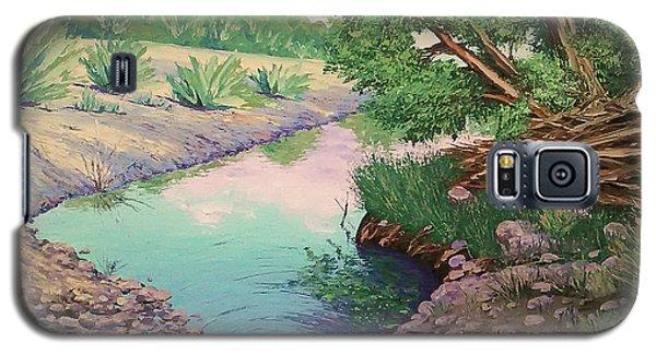 Tonto Creek Galaxy S5 Case