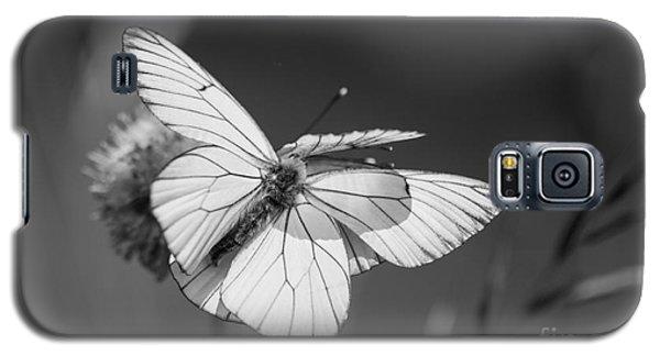 Too Many Wings Galaxy S5 Case by Jivko Nakev