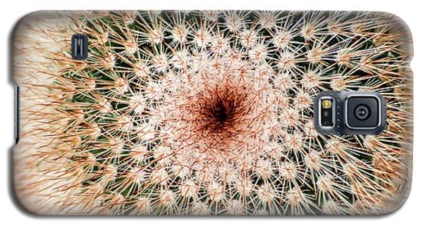 Top Of Cactus Galaxy S5 Case