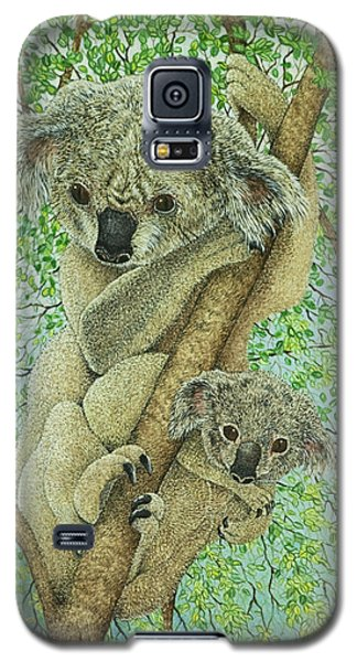 Koala Galaxy S5 Case - Top Of The Tree by Pat Scott