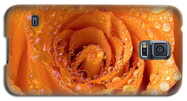 Top View Of An Orange Rose With Droplets Galaxy S5 Case