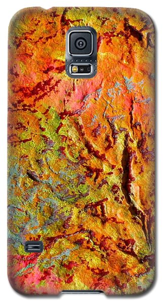 Galaxy S5 Case featuring the painting Topographical Map Color Poem by Polly Castor