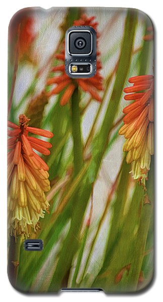 Torch Lily At The Beach Galaxy S5 Case by Sandi OReilly