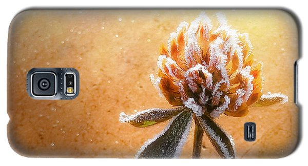 Torcia Galaxy S5 Case