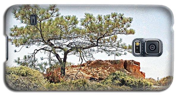 Torrey Pine 1 Galaxy S5 Case