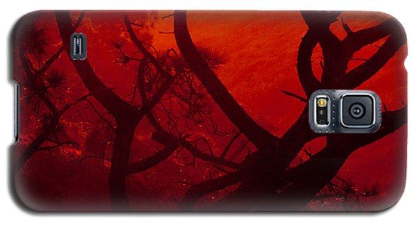 Torrey Pines Glow Galaxy S5 Case