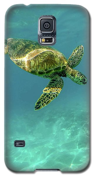 Tortoise Galaxy S5 Case