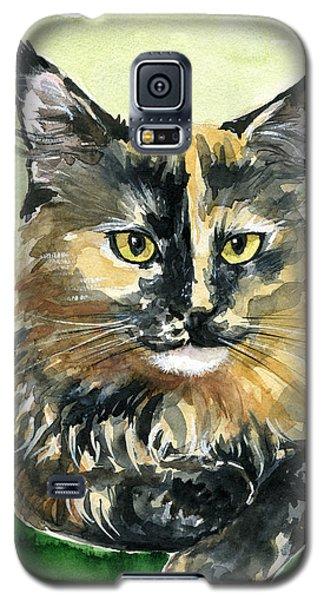 Tortoiseshell Maine Coon Portrait Galaxy S5 Case