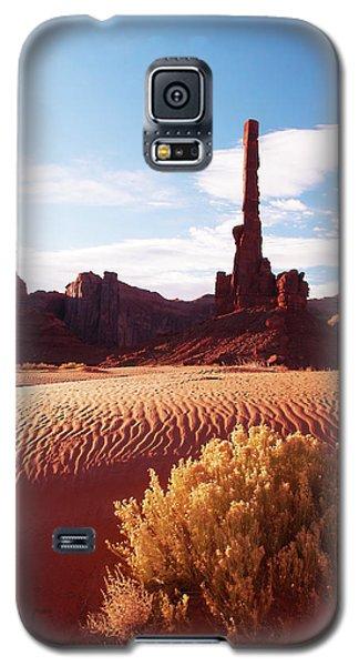 Totem Pole Galaxy S5 Case