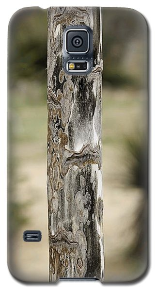 Galaxy S5 Case featuring the photograph Totem Pole  by Viktor Savchenko