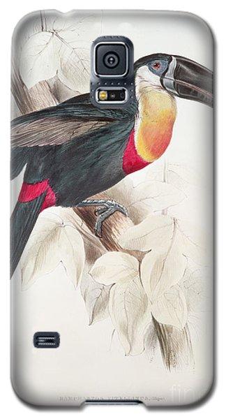 Audubon Galaxy S5 Case - Toucan by Edward Lear