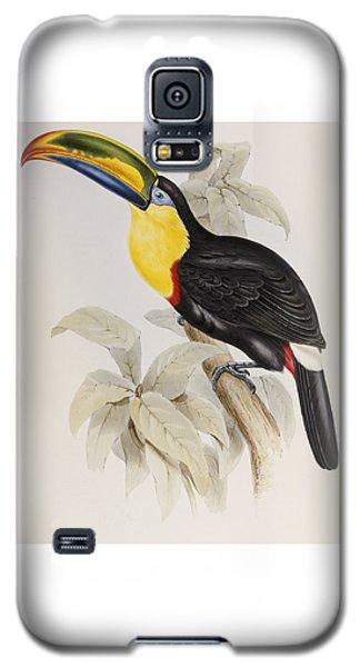 Toucan Galaxy S5 Case - Toucan by John Gould