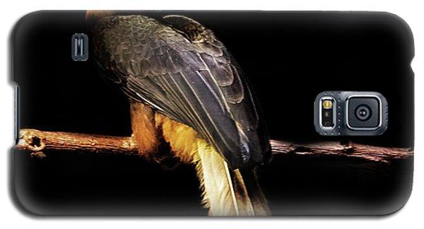 Toucan Galaxy S5 Case - Toucan by Martin Newman