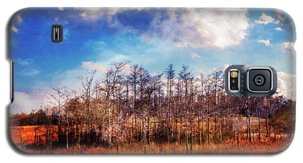 Galaxy S5 Case featuring the photograph Touch Of Autumn In The Glades by Debra and Dave Vanderlaan