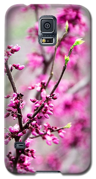 Touch Of Spring Galaxy S5 Case