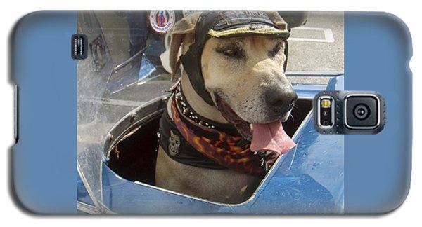Tourist Dog 2 Square Galaxy S5 Case