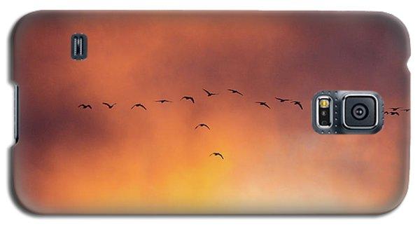 Towards The Sun Galaxy S5 Case