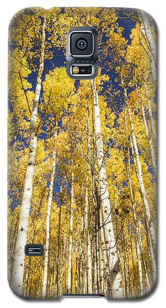 Galaxy S5 Case featuring the photograph Towering Aspens by Phyllis Peterson