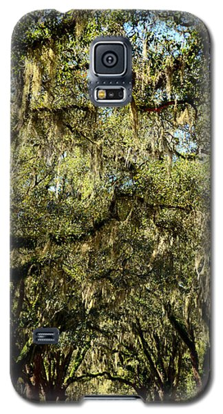 Towering Canopy Galaxy S5 Case by Carla Parris