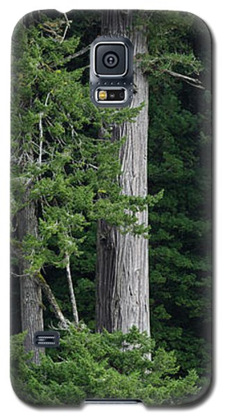 Towering Galaxy S5 Case