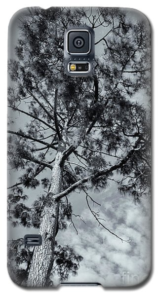 Galaxy S5 Case featuring the photograph Towering by Linda Lees