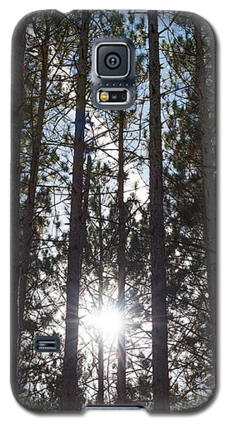 Towering Pines Galaxy S5 Case