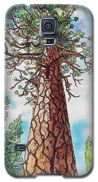 Towering Ponderosa Pine Galaxy S5 Case