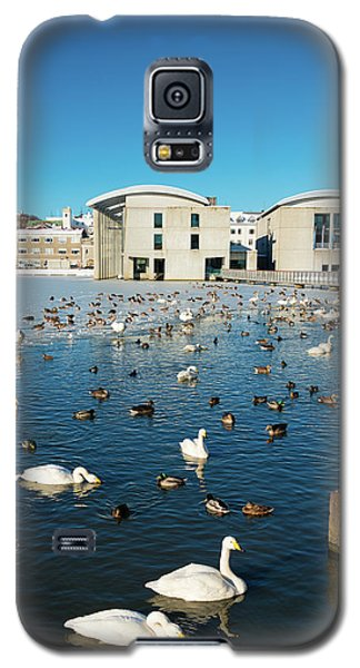 Galaxy S5 Case featuring the photograph Town Hall And Swans In Reykjavik Iceland by Matthias Hauser