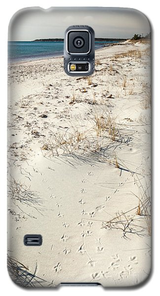 Galaxy S5 Case featuring the photograph Tracks On The Beach by Michelle Wiarda