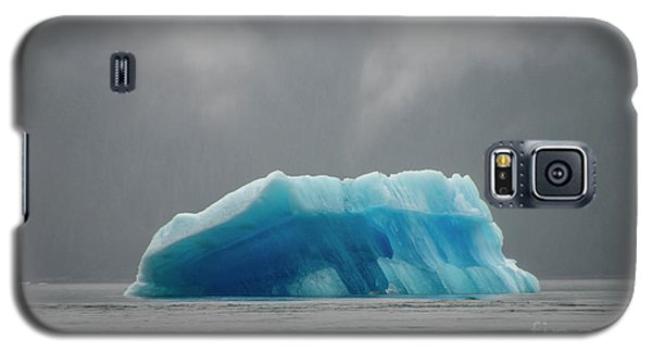 Iceberg - Tracy Arm Fjord Galaxy S5 Case
