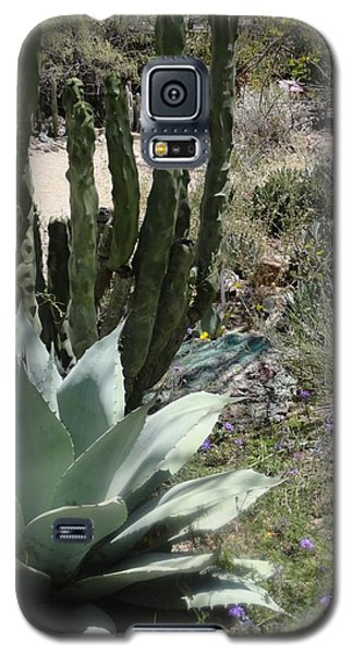 Trail Of Cactus Galaxy S5 Case